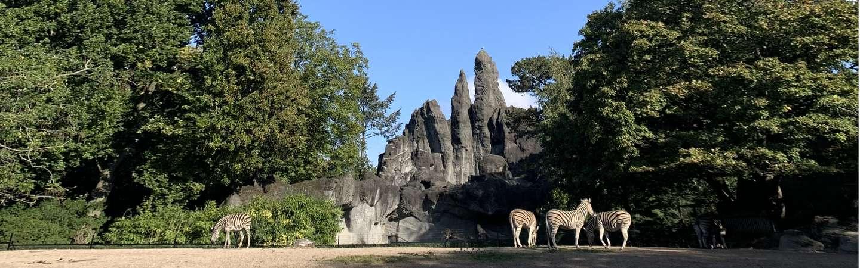 Hamburg Urlaub Hagenbecks Tierpark